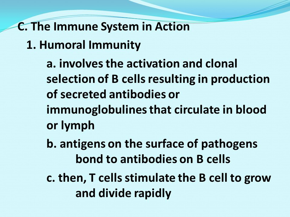 C. The Immune System in Action 1. Humoral Immunity a