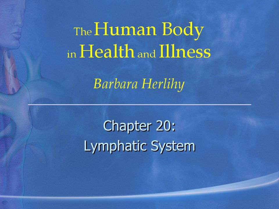 Chapter 20: Lymphatic System