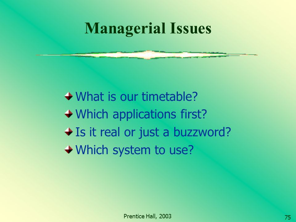 Managerial Issues What is our timetable Which applications first