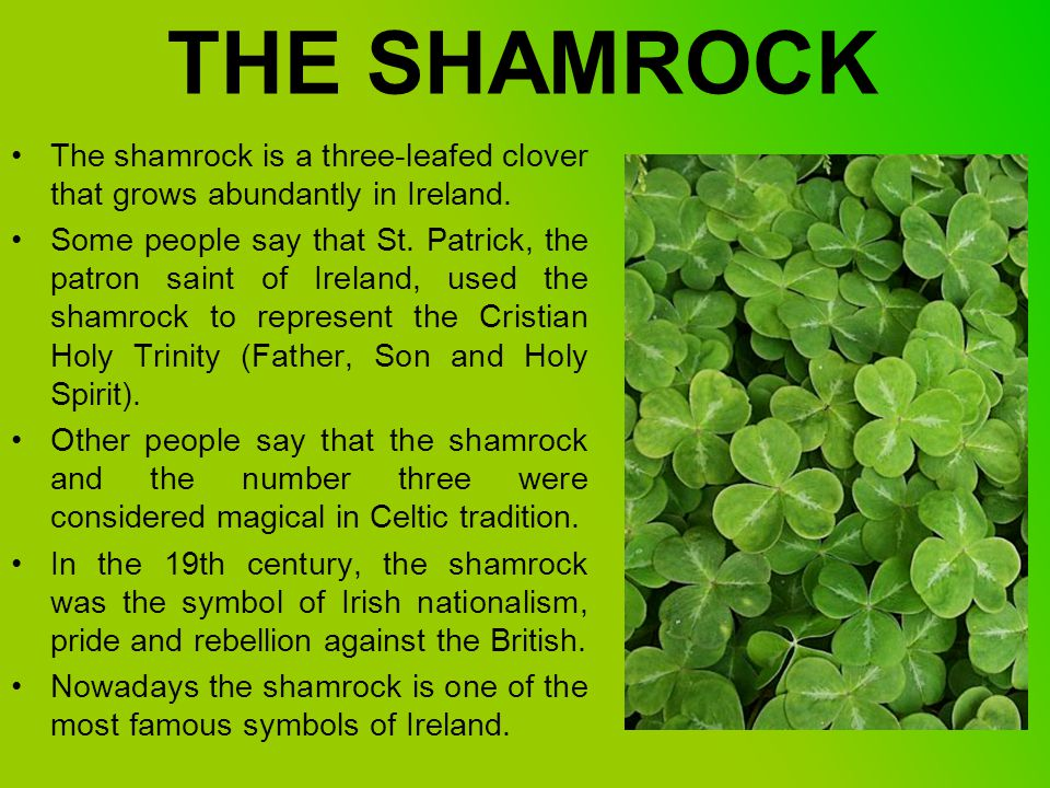 Ireland The Emerald Island Symbols Ppt Video Online Download
