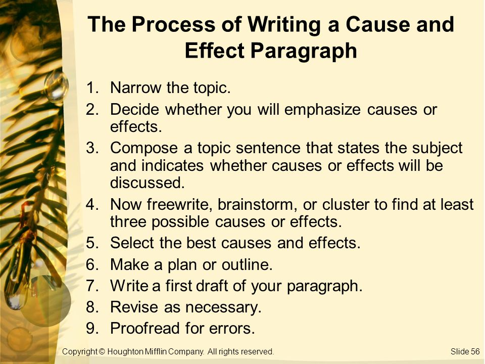Reflective Essay English Class Cause And Effect Paragraph Ppt College Vs High School Essay Compare And Contrast also Writing A High School Essay Cause And Effect Paragraph Ppt Cause And Effect  Thesis Of An Essay