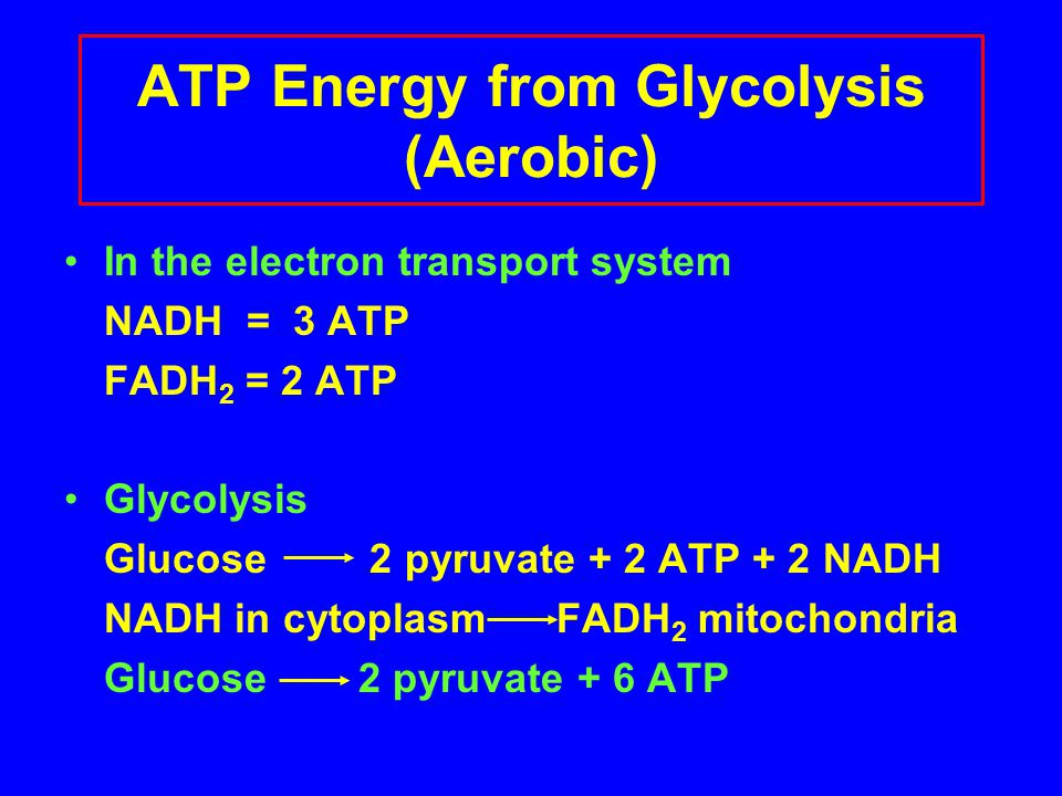 ATP Energy from Glycolysis (Aerobic)