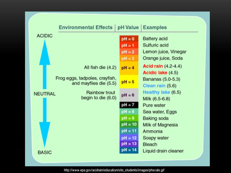 ACID-RAIN--duluthhigh-org--PPT | Powerpoint Presentations ...