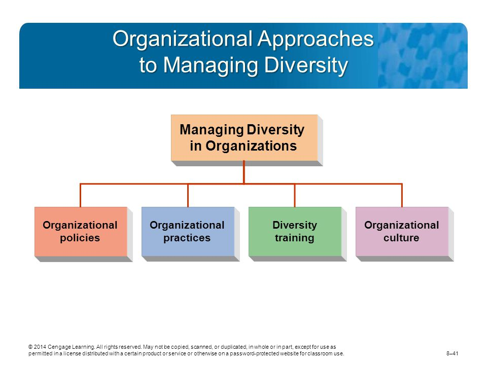 Organizational Approaches to Managing Diversity
