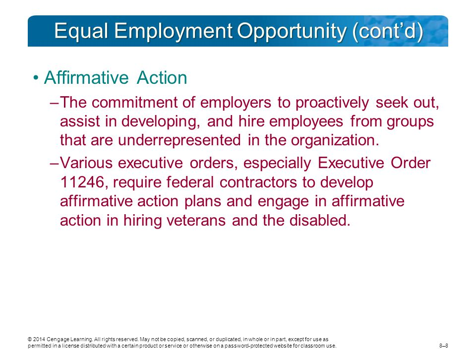 Equal Employment Opportunity (cont'd)