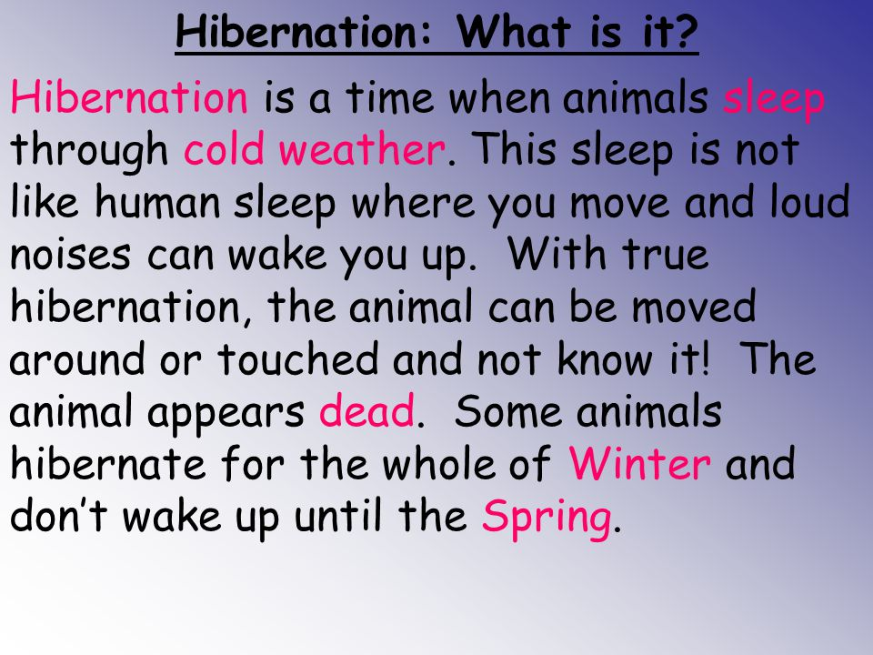 Hibernation: What is it