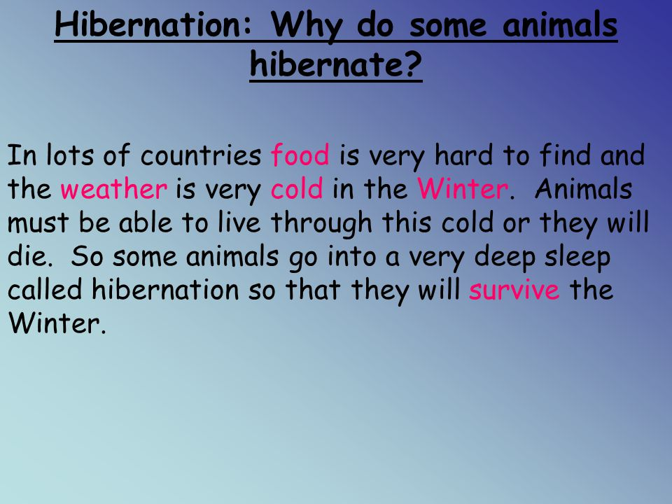 Hibernation: Why do some animals hibernate
