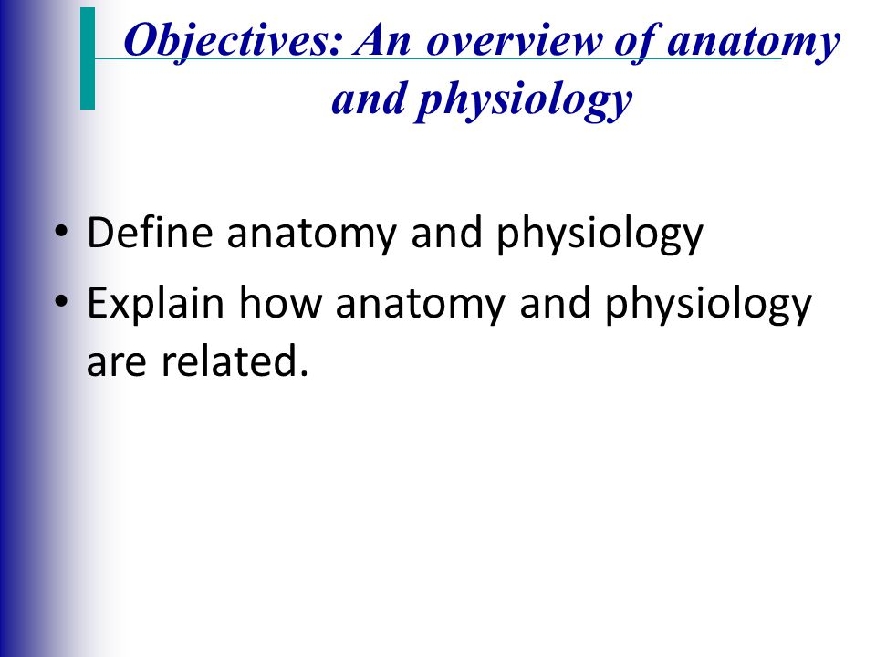 Bonito Explain How Anatomy And Physiology Are Related Imágenes ...
