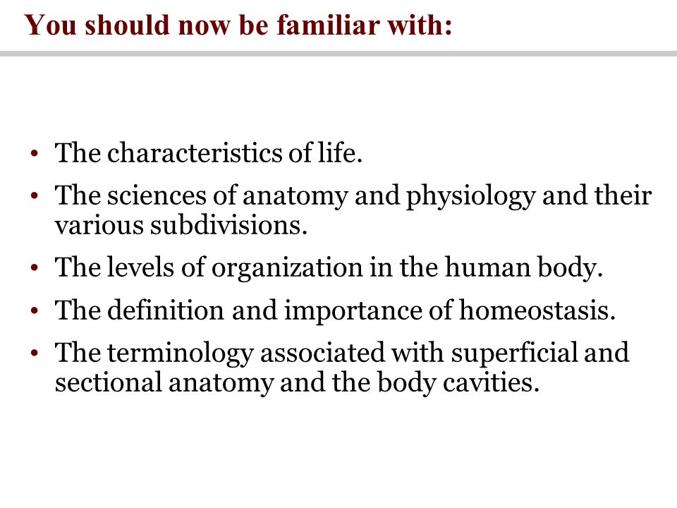 Luxury What Is The Definition Of Anatomy And Physiology Photo ...