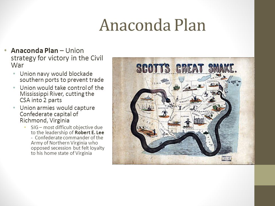 plan anaconda