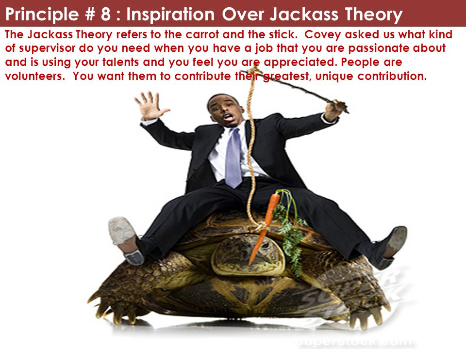 Principle # 8 : Inspiration Over Jackass Theory