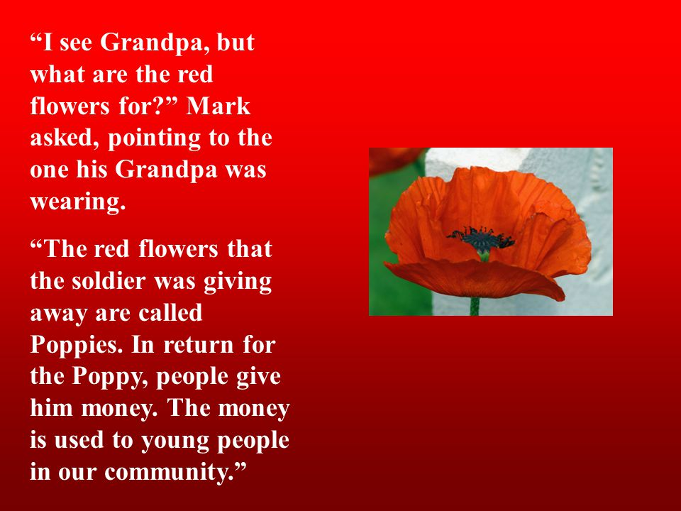Remembrance Day Why Do We Remember?  - ppt video online download