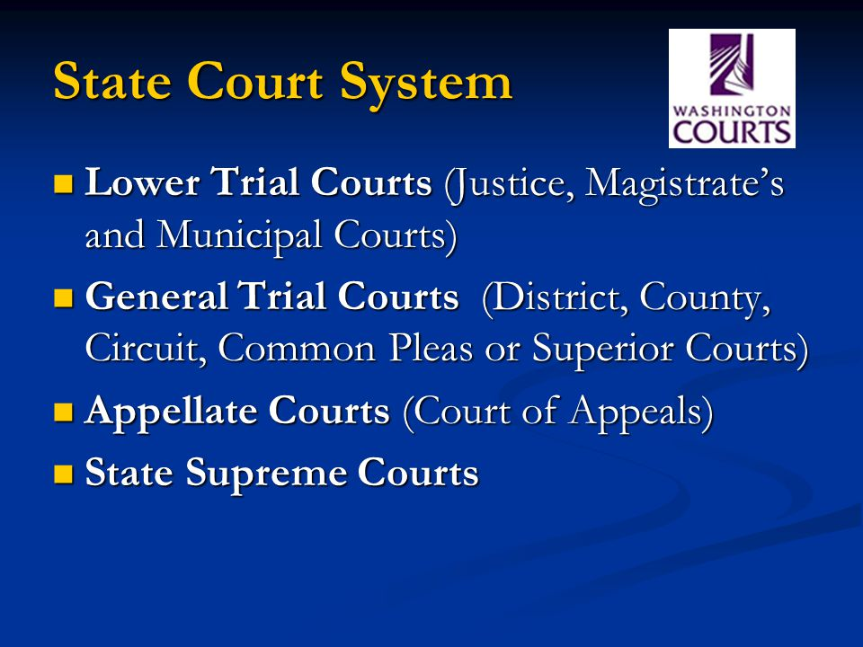 State Court System Lower Trial Courts (Justice, Magistrate's and Municipal Courts)