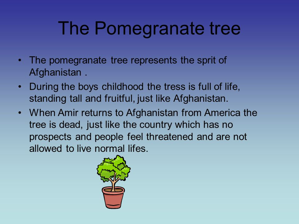 kite runner pomegranate tree The wilted pomegranate tree is the most significant symbol in the story because it signifies amir and hassan's friendship the tree also signifies the past and the present, where the past was when amir carved, amir and hassan, the sultans of kabul.