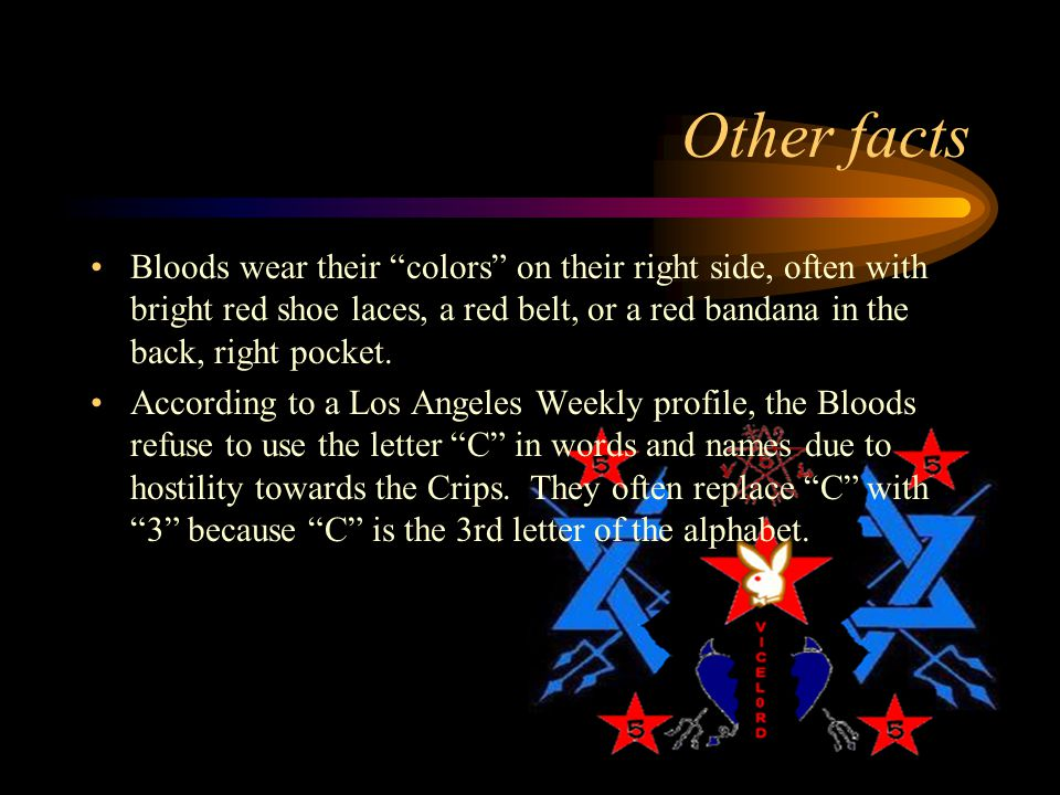 THE EPIC HISTORY OF GANGS - ppt video online download