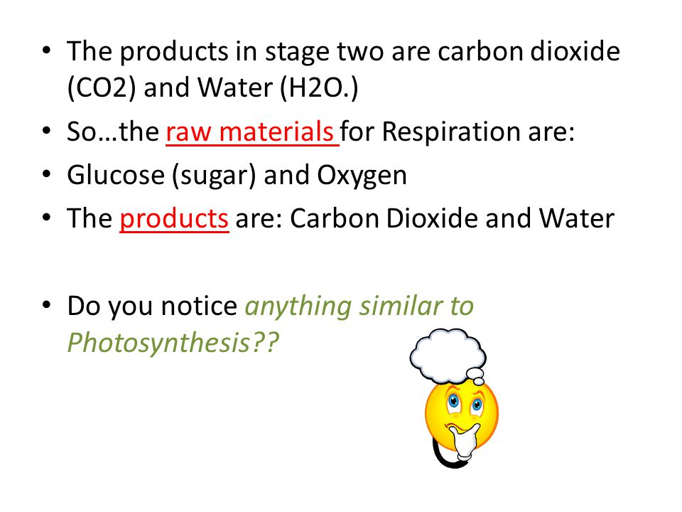 The products in stage two are carbon dioxide (CO2) and Water (H2O.)