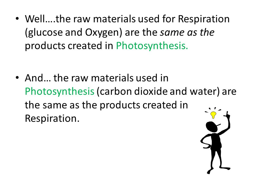 Well….the raw materials used for Respiration (glucose and Oxygen) are the same as the products created in Photosynthesis.