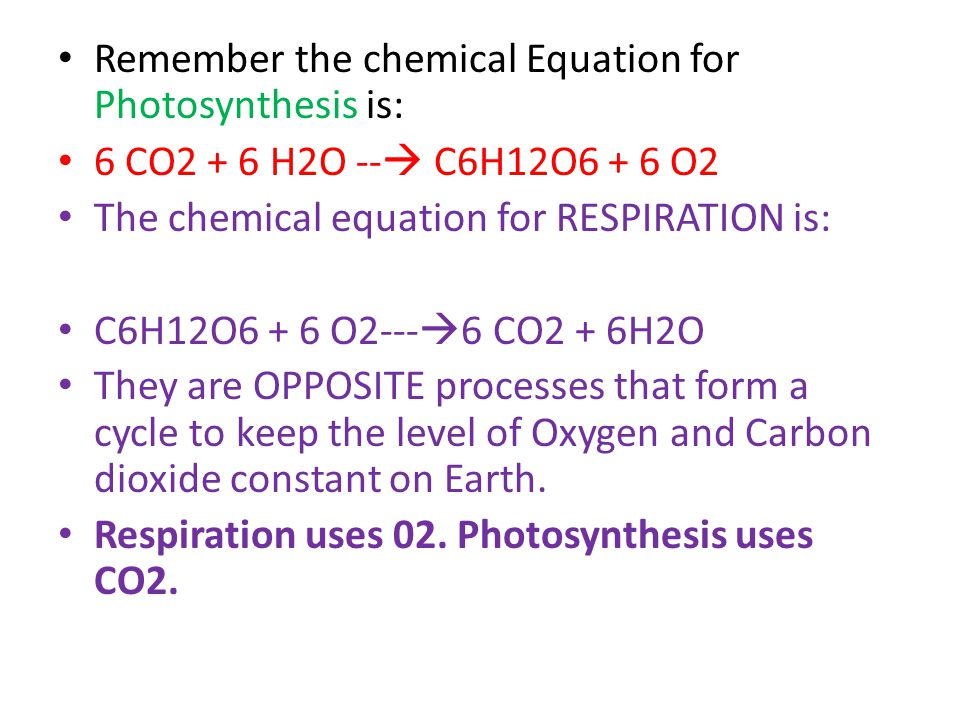 Remember the chemical Equation for Photosynthesis is: