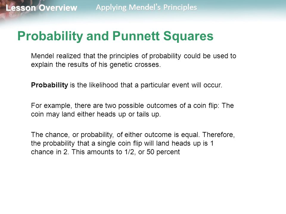 Chapter 11 Section 2 Applying Mendel's Principles - ppt download