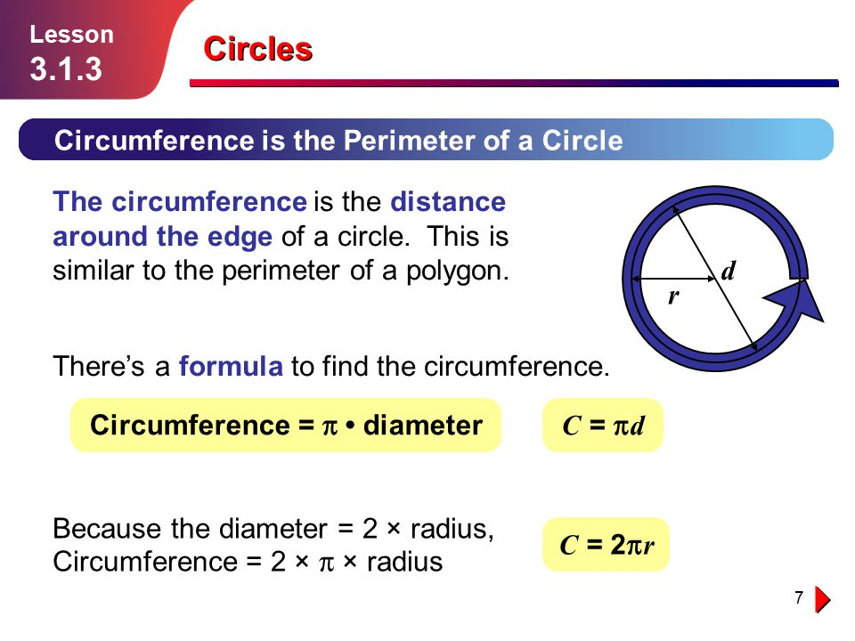 Circles Circumference is the Perimeter of a Circle