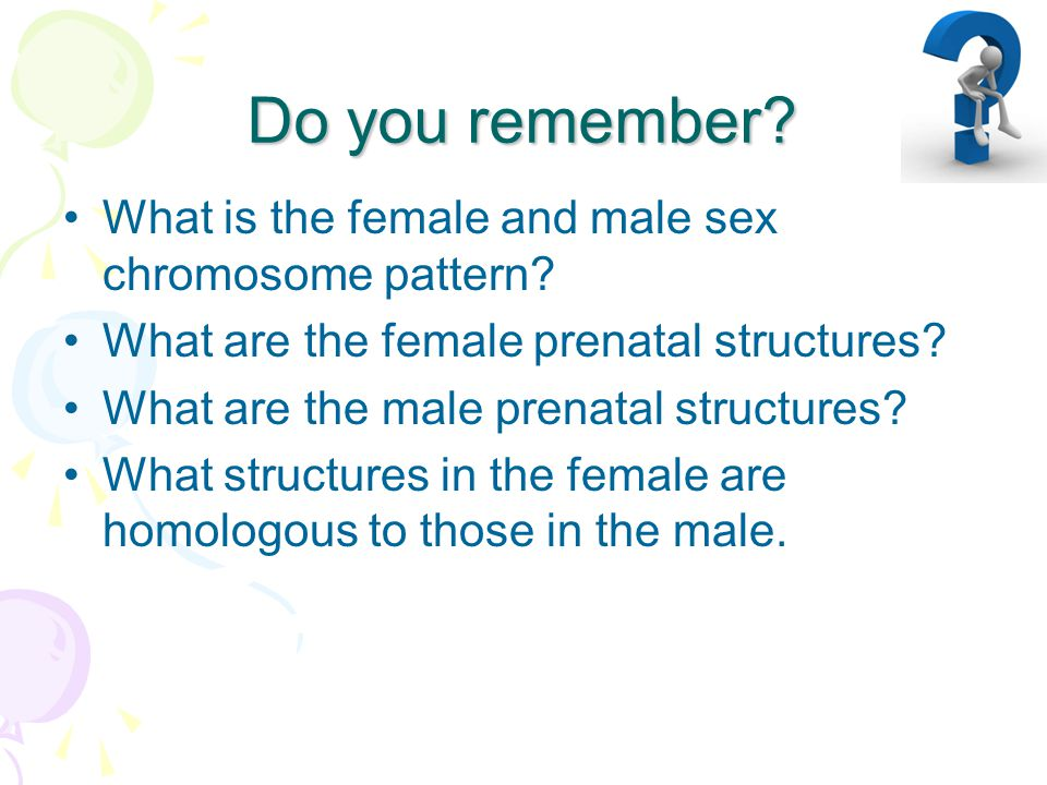 Do you remember What is the female and male sex chromosome pattern