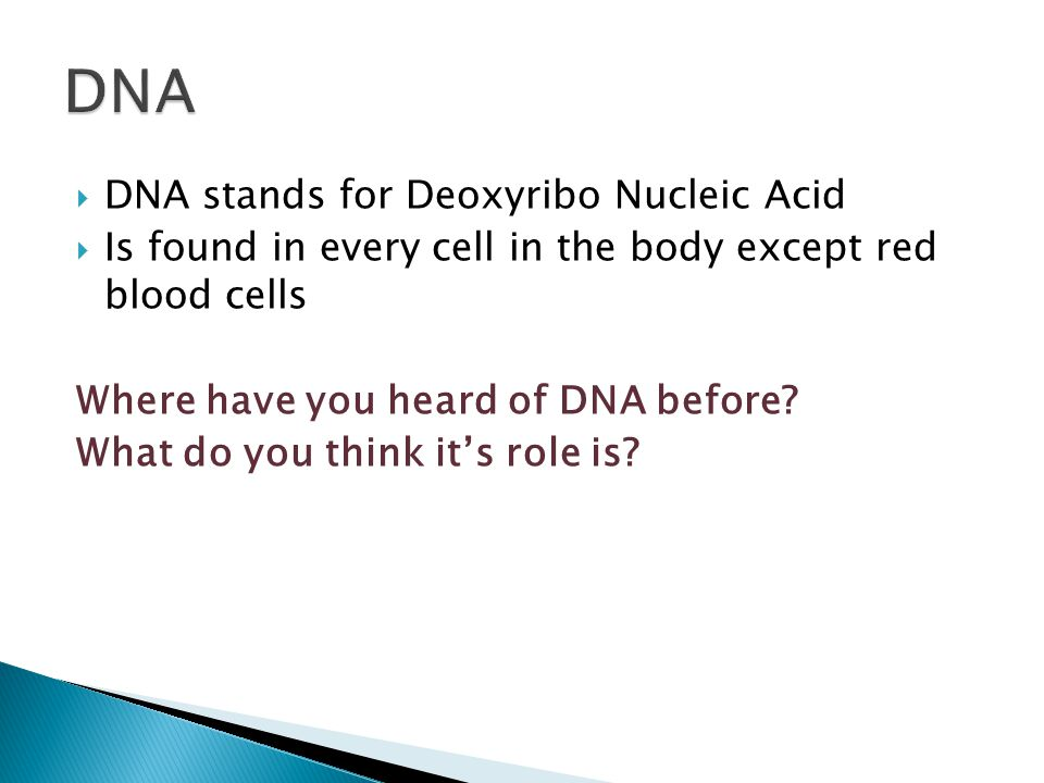 what do the letters dna stand for genetics 1 1 demonstrate understanding of biological ideas 25510
