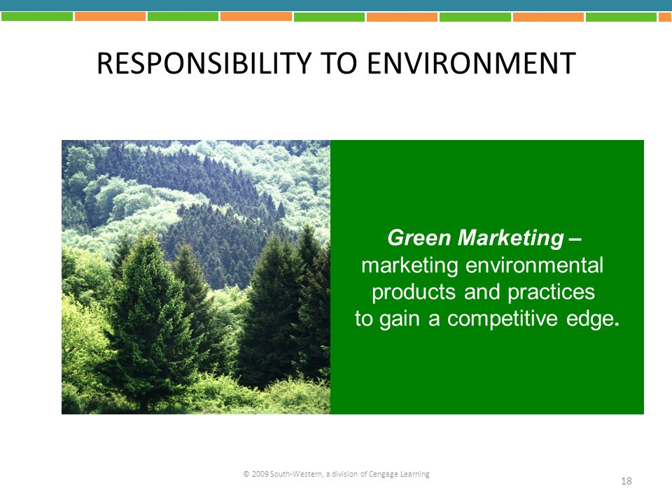 RESPONSIBILITY TO ENVIRONMENT