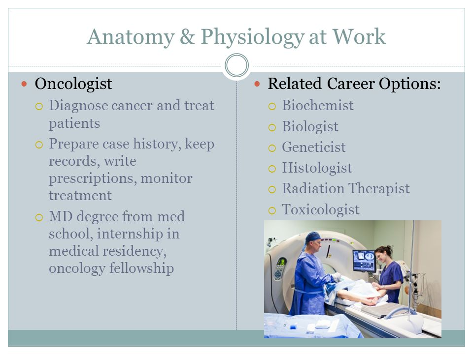 Outstanding Careers Related To Anatomy Photos Anatomy And