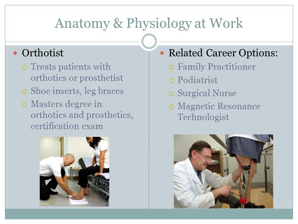 Anatomy and Physiology at Work - ppt download