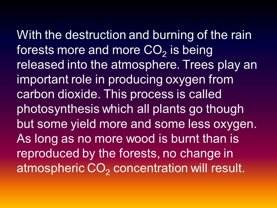 With the destruction and burning of the rain forests more and more CO2 is being released into the atmosphere.