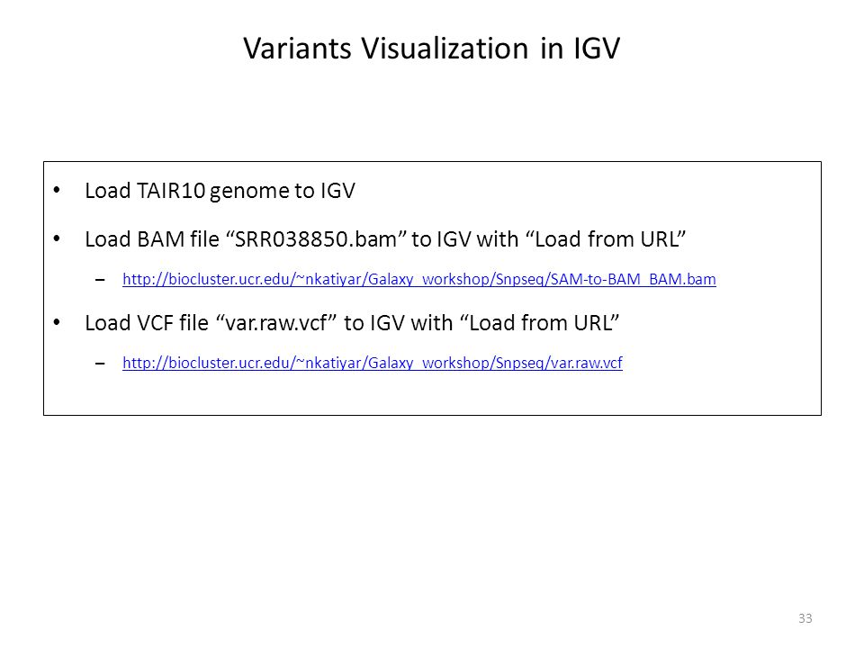 Variants Visualization in IGV