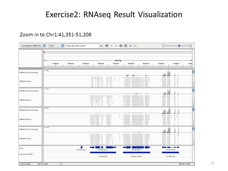 Exercise2: RNAseq Result Visualization