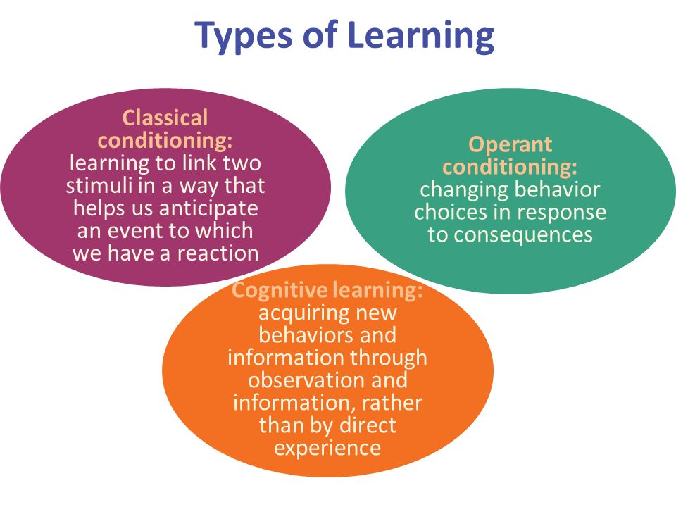 type of learners Most learners cannot be so categorically defined because everyone learns differently, there are perhaps, if you want to be very exact, as many types of learners as learners.