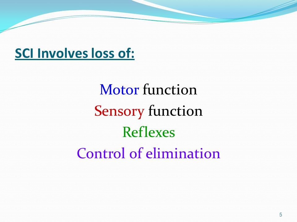 Spinal cord injury sci ppt download for Loss of motor control
