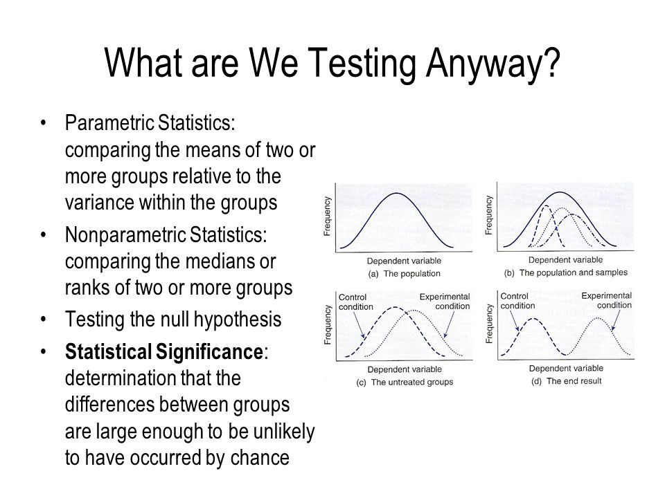 What are We Testing Anyway