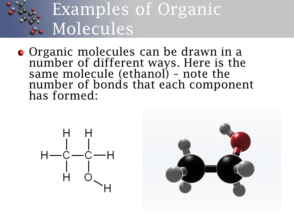 Organic Chemistry Introduction Ppt Video Online Download