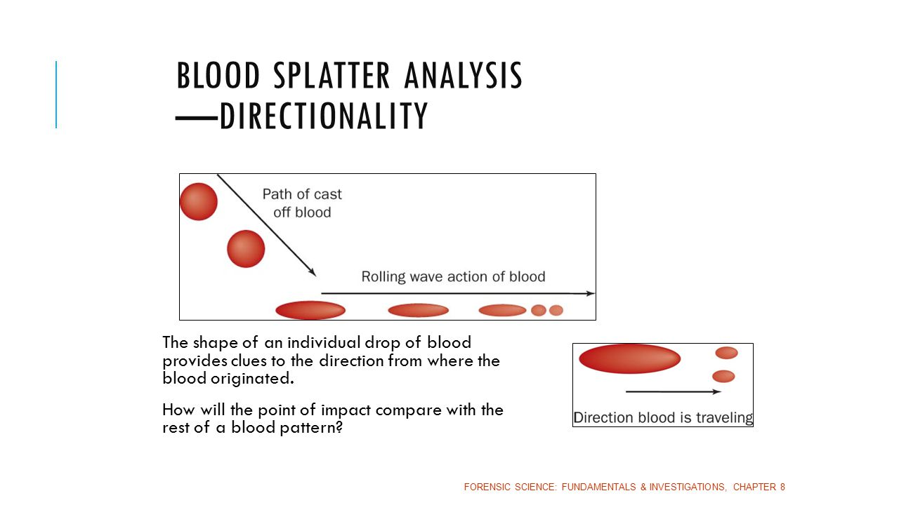 9 Blood Splatter Analysis Directionality