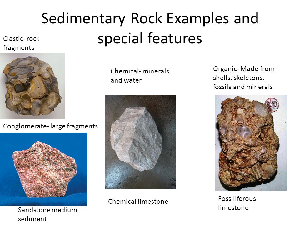 sedimentary rocks essay example Sedimentary rocks, are rocks that are formed by the compaction of sediments or by the crystallization of the dissolved minerals metamorphism of quartz-bearing igneous and sedimentary rocks typically increases the amount of quartz and its grain size.