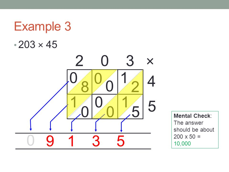 Example × × Mental Check: The answer should be about 200 x 50 = 10,000.