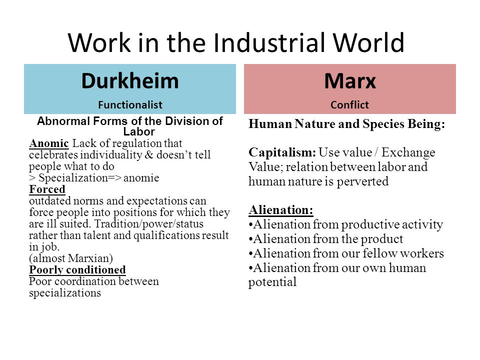 anomic division of labor