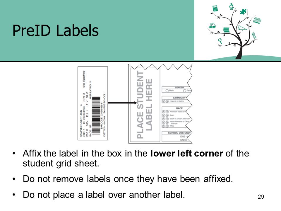 PreID Labels Affix the label in the box in the lower left corner of the student grid sheet. Do not remove labels once they have been affixed.