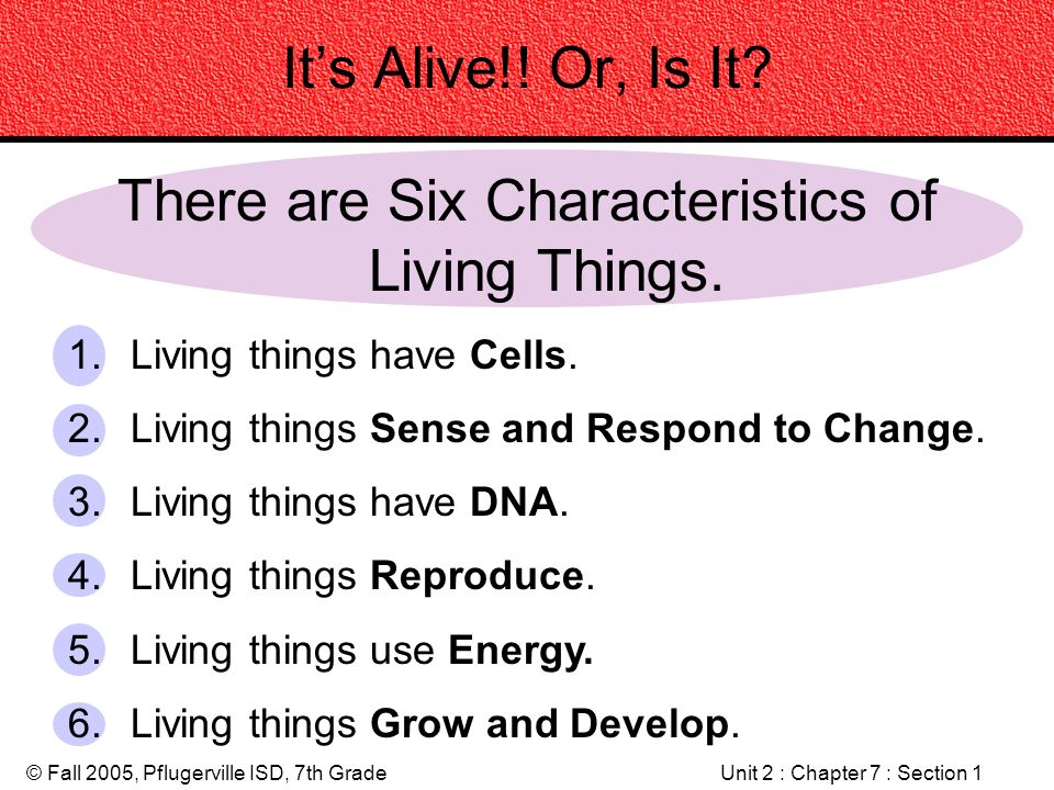 There Are Six Characteristics Of Living Things
