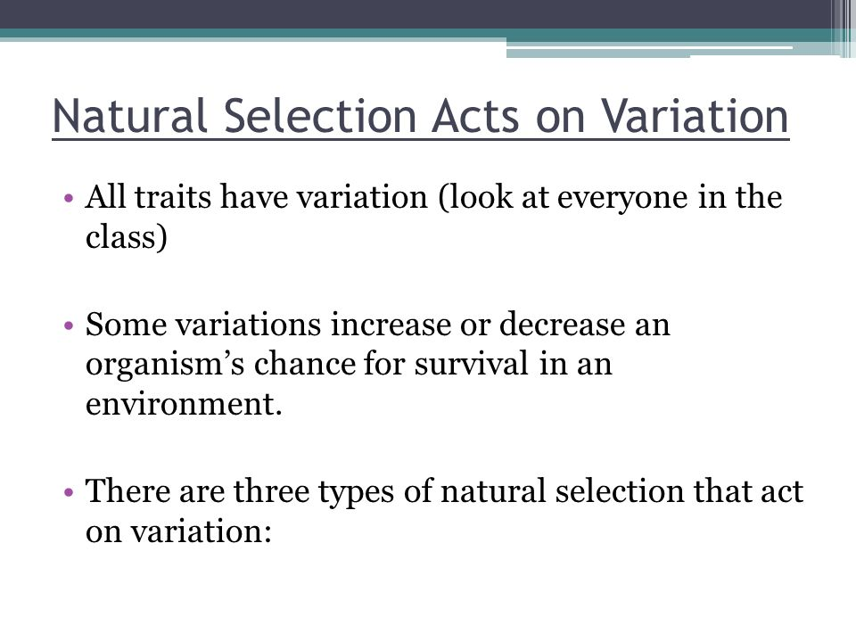 Natural Selection Acts on Variation