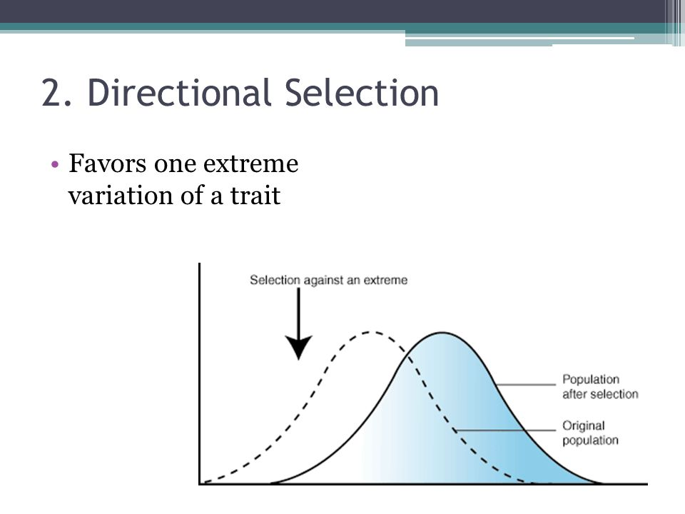 2. Directional Selection