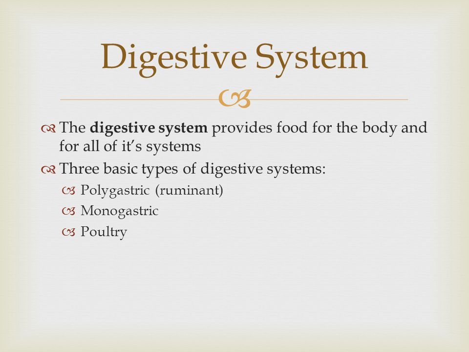 Digestive System The digestive system provides food for the body and for all of it's systems. Three basic types of digestive systems: