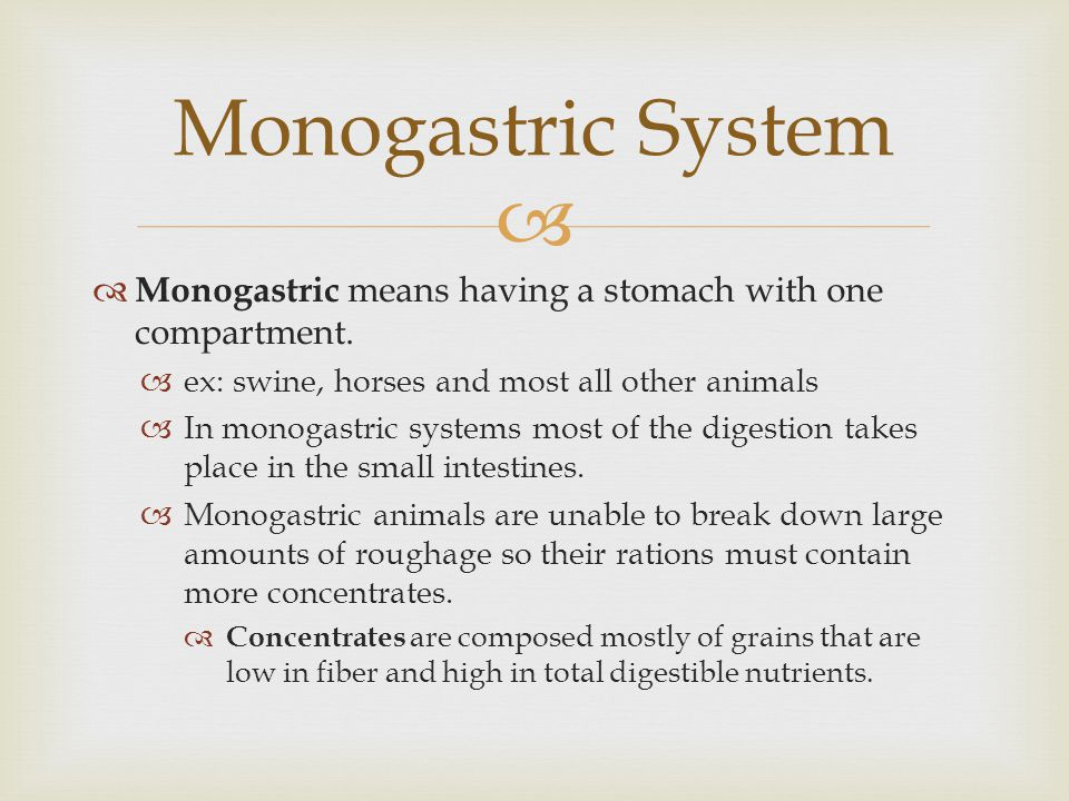 Monogastric System Monogastric means having a stomach with one compartment. ex: swine, horses and most all other animals.