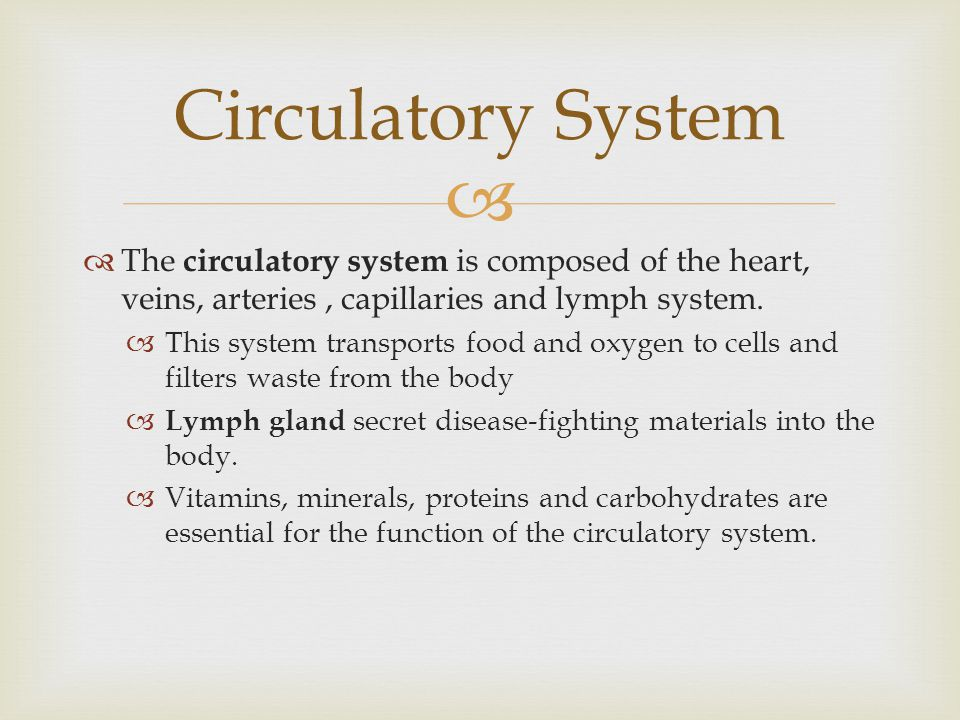 Circulatory System The circulatory system is composed of the heart, veins, arteries , capillaries and lymph system.
