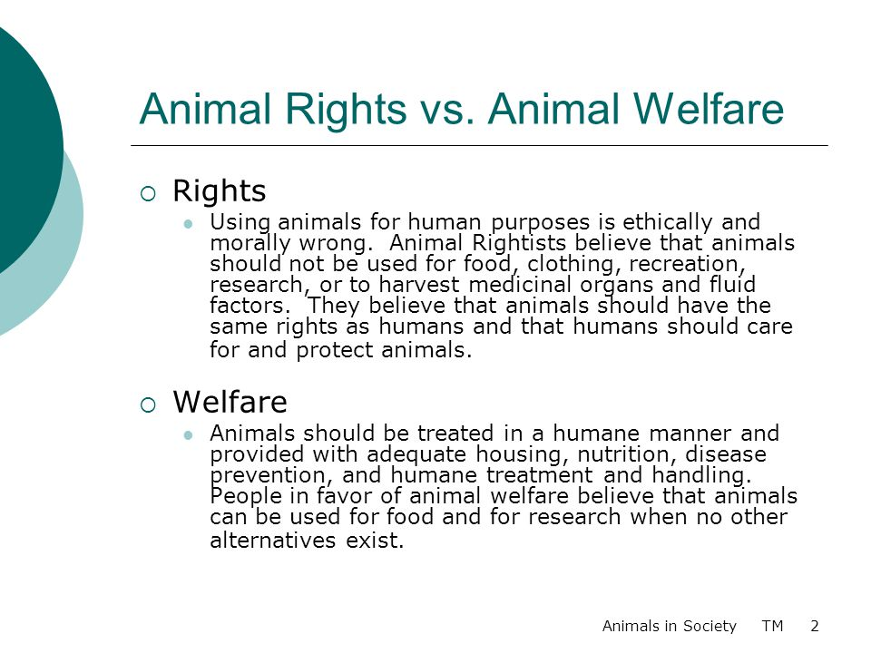 animal welfare vs animal rights research paper