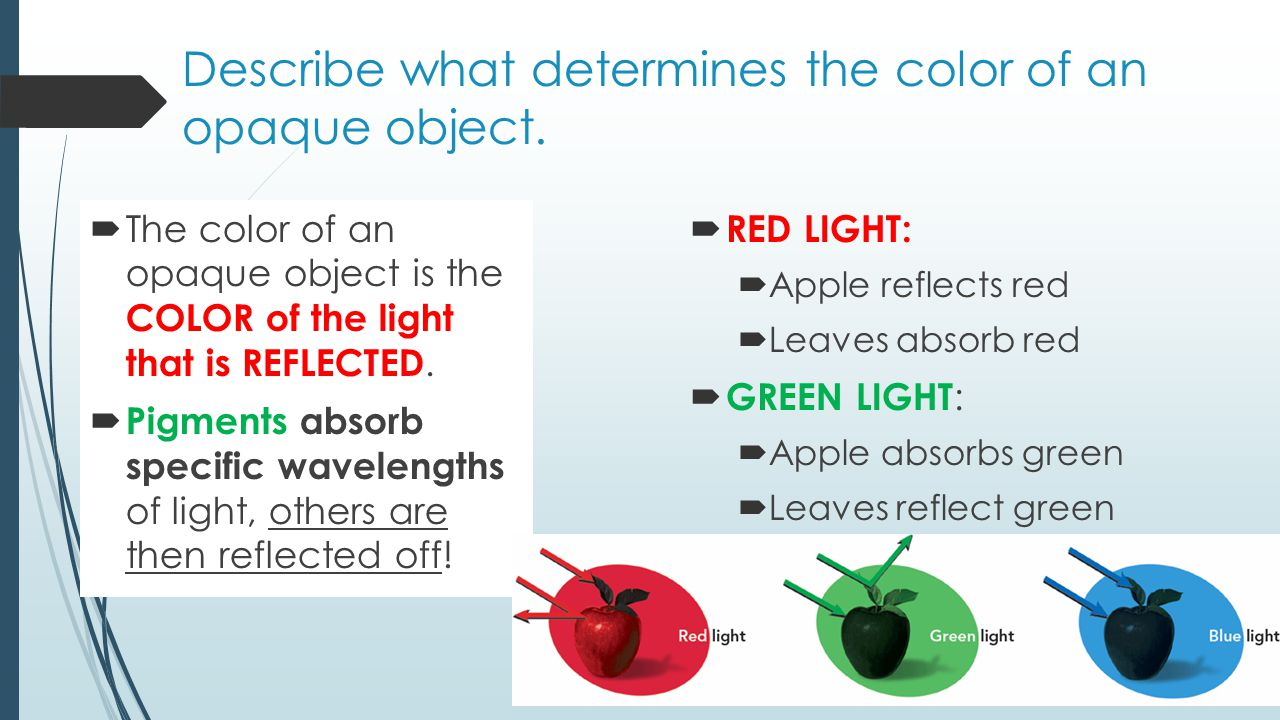 Describe what determines the color of an opaque object.