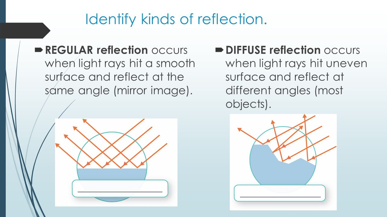 Identify kinds of reflection.
